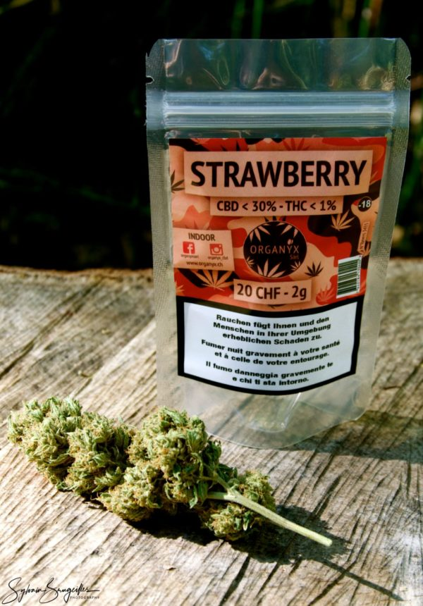strawberry_CBD_Organyx_CBD